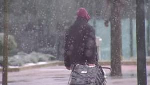 Alerta de tormenta invernal en la costa este de EE.UU.