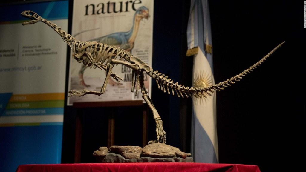 Un fósil revela cómo se apareaban los dinosaurios