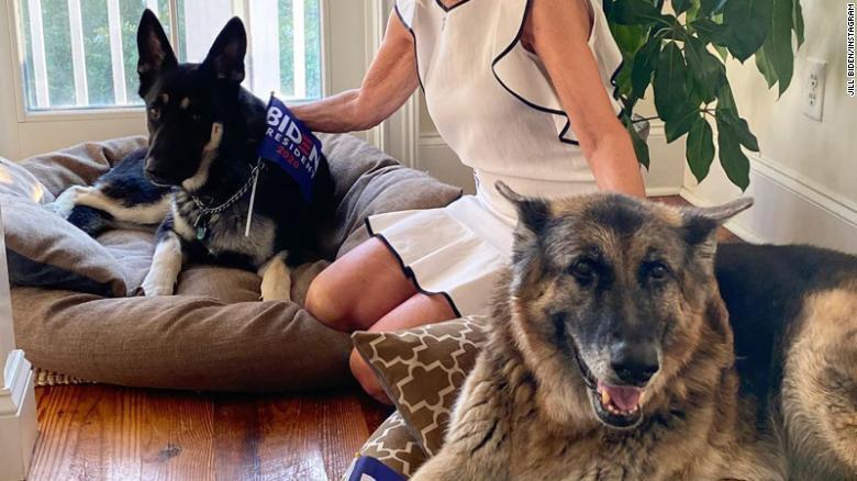 Los perros presidenciales Champ y Major se mudaron a la Casa Blanca el domingo