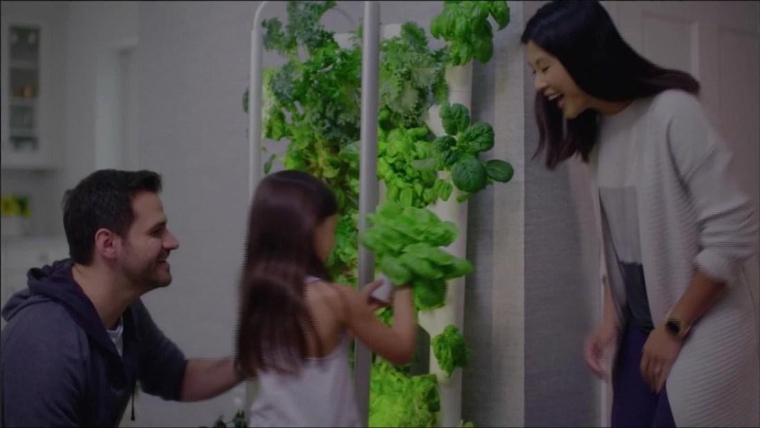 Gardyn Home posibilita cultivar plantas en casa sin luz solar