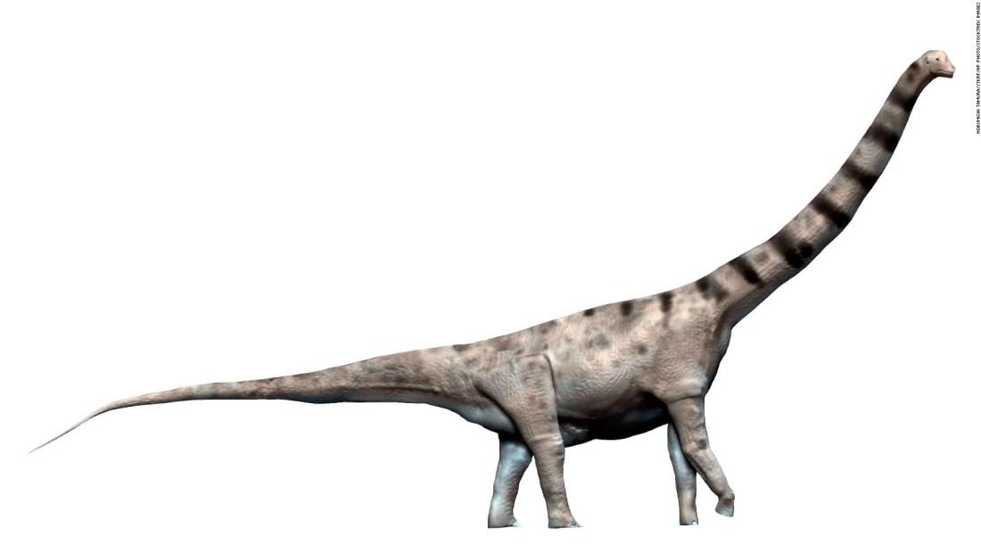 Hallan en Argentina fósiles de un dinosaurio gigante