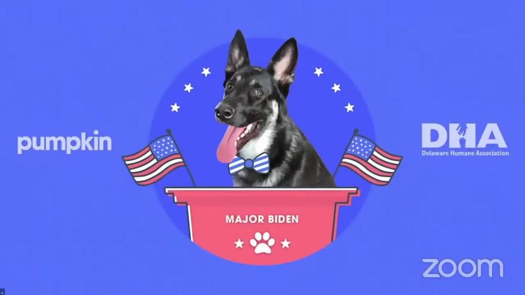 Evento de uno de los perros de los Biden molesta a algunos