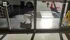 Mira a esta perrita esperar a su amo afuera del hospital