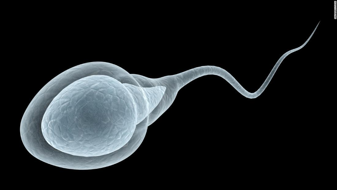 Does Covid-19 affect Male fertility? Experts warn before Study