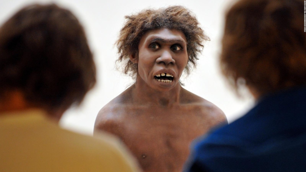 Neanderthal extinction: a possible explanation of the mystery