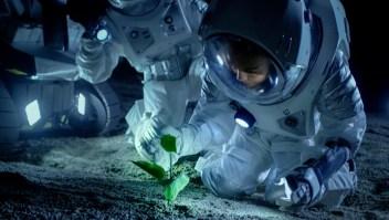 La NASA lanza concurso de comida para el espacio exterior
