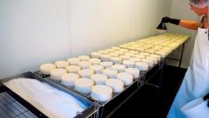 Brote de listeriosis en quesos preferidos por hispanos
