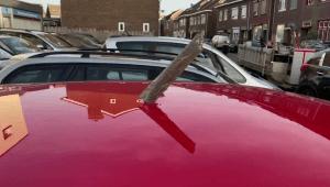 Hallan escombros del motor de un avión en Países Bajos
