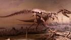 Descubren nuevo dinosaurio en Asia