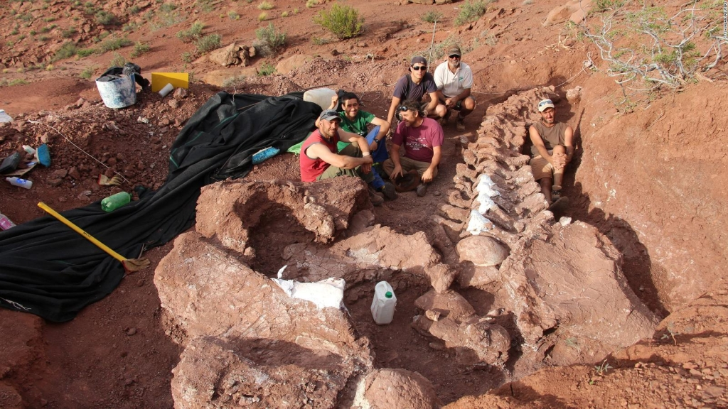 Conoce detalles sobre el fósil de dinosaurio en Argentina