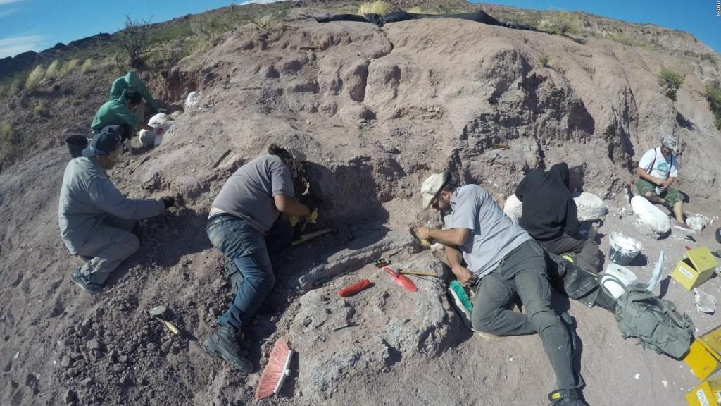 El titanosaurio más antiguo del mundo: esto debes saber