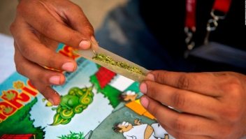 Reacciones por ley de consumo de marihuana en México