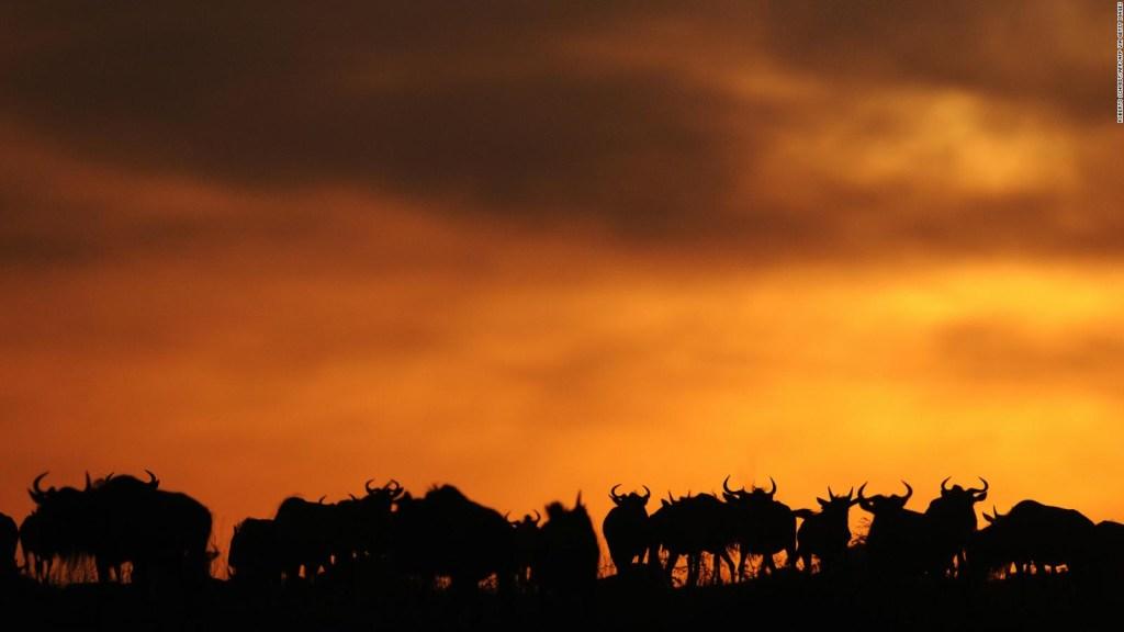 Estos son los 5 mejores parques nacionales del mundo