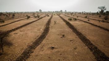 El desierto de Sahara no para de crecer