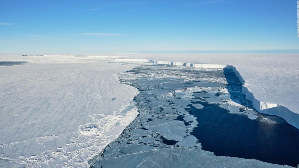 Ve imágenes inéditas de la vida bajo la Antártida
