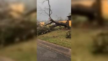 Un hombre grabó el interior del tornado en Alabama