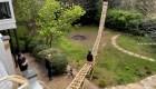 Construye una montaña rusa en el jardín