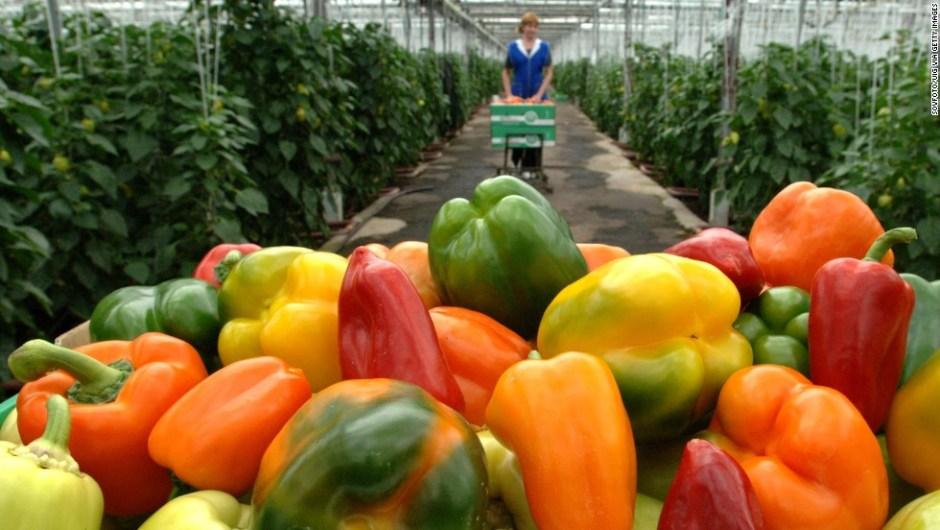 alimentos pesticida
