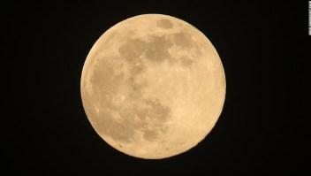 arca-lunar-
