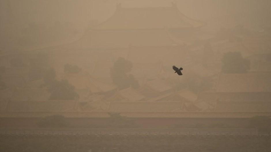 tormenta de arena china cuervo 2