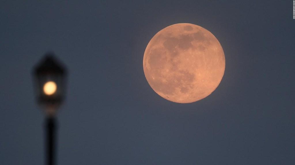 Cómo observar la superluna rosa y lluvia de las líridas