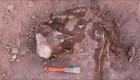 ¿Por qué hay tantos fósiles de dinosaurios en Argentina?