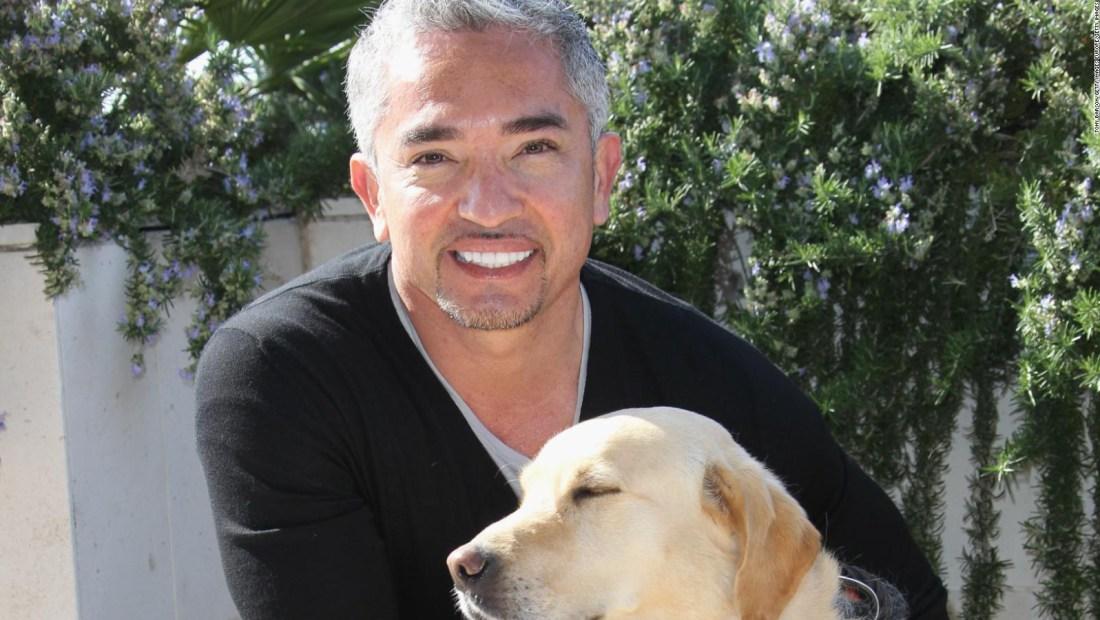 De indocumentado en EE.UU. a famoso entrenador de perros
