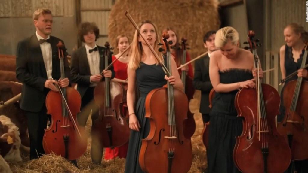 Orquesta da un concierto frente a público muy peculiar