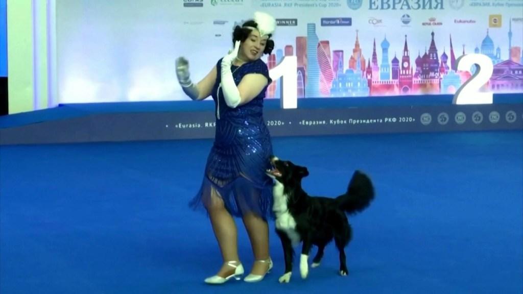 Perros brillan en competencia de baile rusa