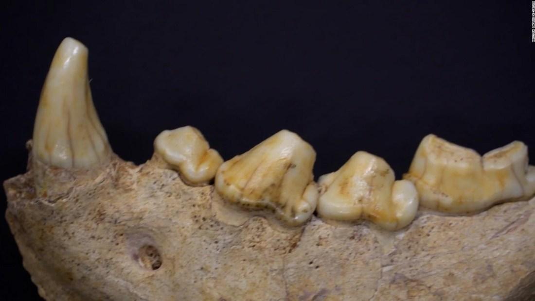 Descubren los restos de 11 neandertales en Italia