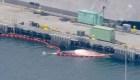 Atraca en California destructor con 2 ballenas muertas