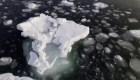 ¿Cómo podría afectar al mundo el deshielo en Antártida?