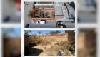 Investigan el hallazgo de 70 bolsas con restos humanos