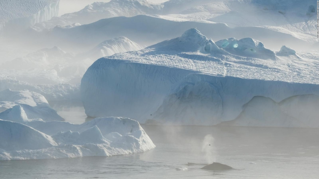Descubren el iceberg más grande del mundo