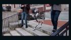 Innovación en robots bípedos