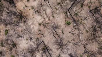 Mundo llegaría a punto de inflexión climática en 5 años
