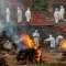 covid nepal india infecta fronteras