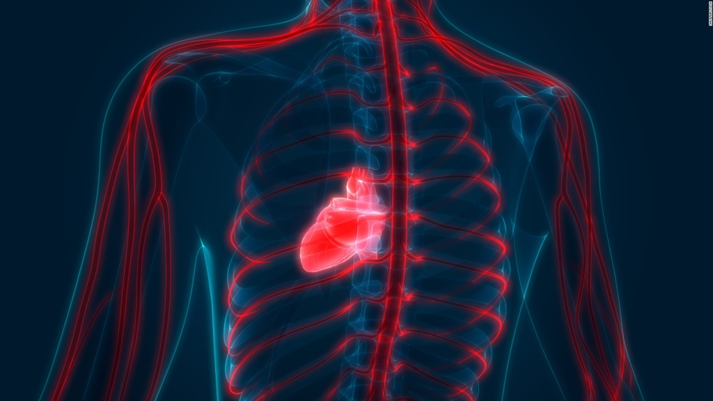 This is how the fatty heart threatens health