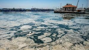"""""""Mocos de mar"""" invaden costas de Turquía"""