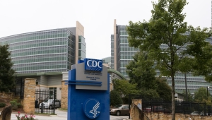 Investigan primer caso de gripe aviar H10N3 en humanos