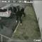 Los hechos de violencia que han sacudido a Miami-Dade