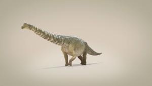Este dinosaurio fue de los más grandes del mundo