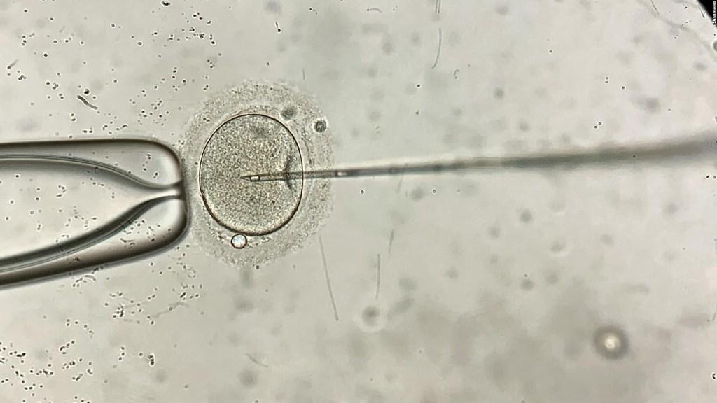 Fallo histórico para víctimas de embriones destruidos
