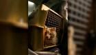 CDC suspenden ingreso de ciertos perros a EE.UU.