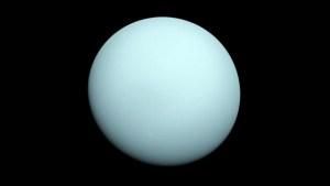 Urano en tiempo real: así es el tour virtual de la NASA