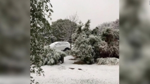 Increíbles imágenes de nevada histórica en Argentina