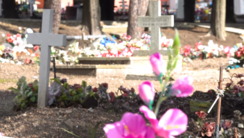 Así enfrentan cementerios en Uruguay aumento de muertes