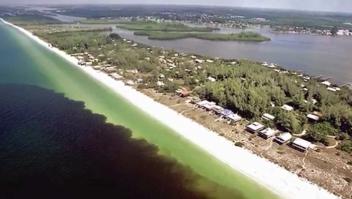 Florida, bajo la amenaza de la marea roja