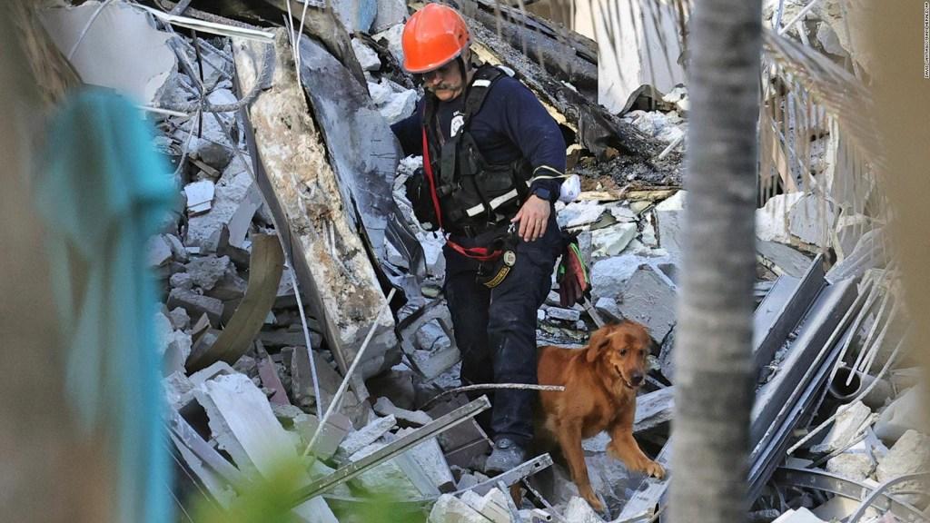 """Colapso en Miami: """"Es crucial encontrar vida"""""""