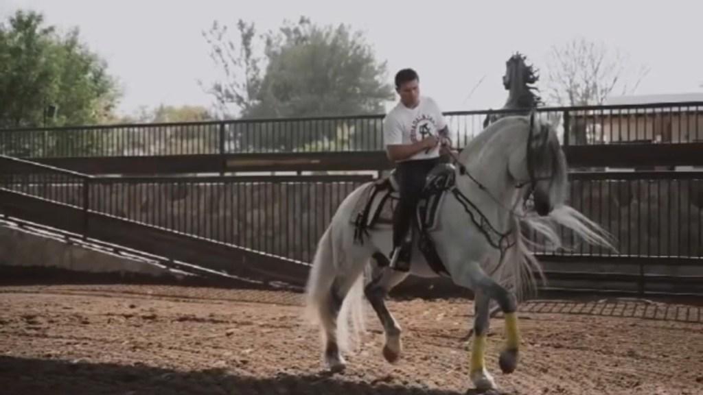 Canelo Álvarez montre sa passion pour les chevaux